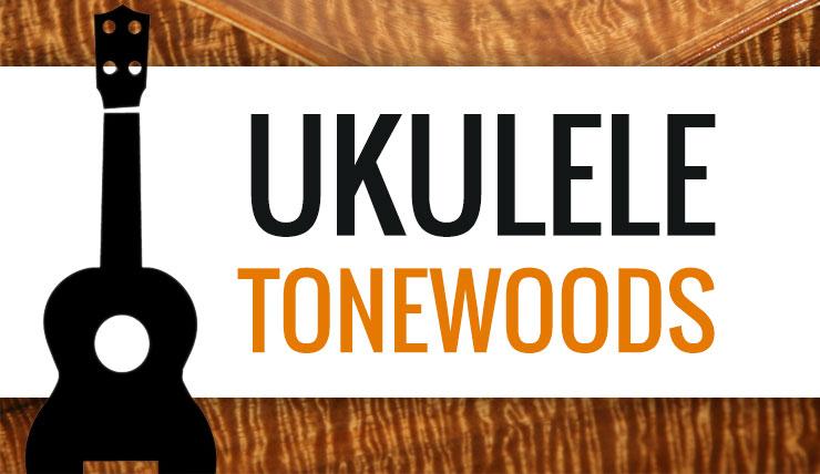 Ukulele Wood Comparison Different Ukulele Wood Types Austin